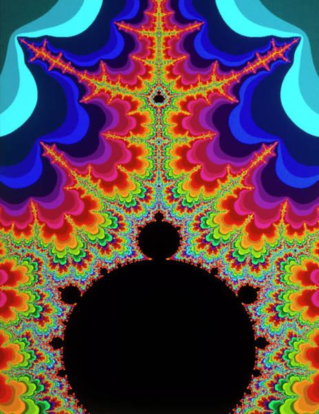 Wall Art - Photograph - Mandelbrot Set:-beacon Force by Gregory Sams/science Photo Library