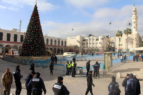 Manger Photograph - Manger Square Tree by Munir Alawi