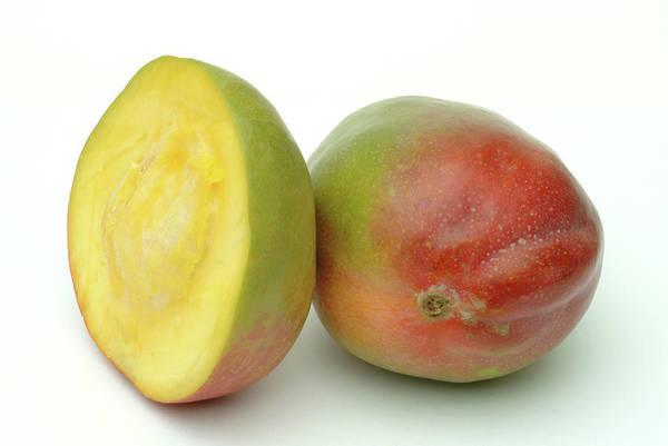 Mangos Photograph - Mangoes by Bildagentur-online/th Foto/science Photo Library