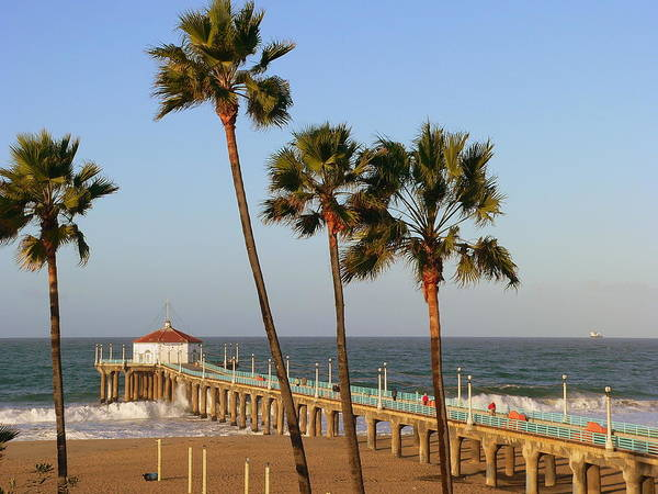 Photograph - Manhaattan Beach Pier Palms by Jeff Lowe