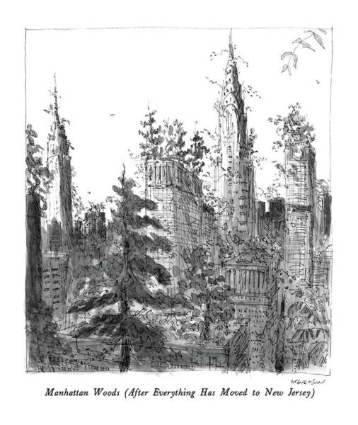 Manhattan Drawing - Manhattan Woods by James Stevenson