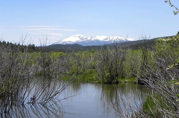 Photograph - Lake Manitou Sp Woodland Park Co by Margarethe Binkley