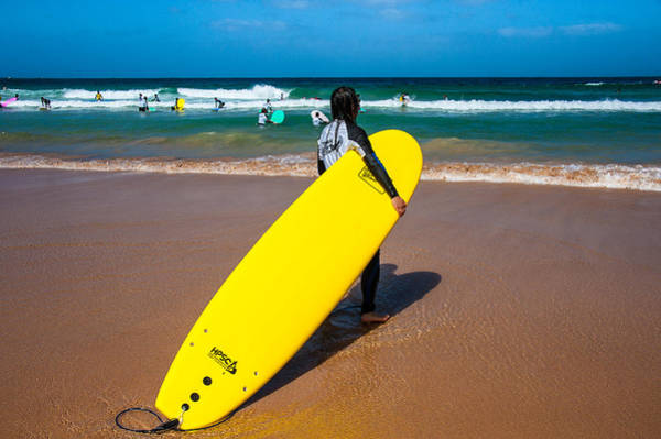 Photograph - Manly Beach Surfer by Harry Spitz