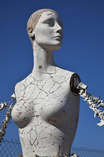 Mannequins Photograph - Mannequin Against Blue Sky by Garry Gay