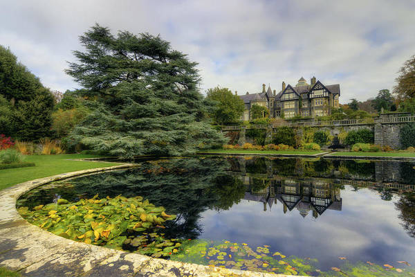 Photograph - Mansion Garden by Ian Mitchell