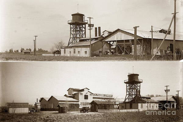 Photograph - Manteca Canning Company California Circa 1920 by California Views Archives Mr Pat Hathaway Archives