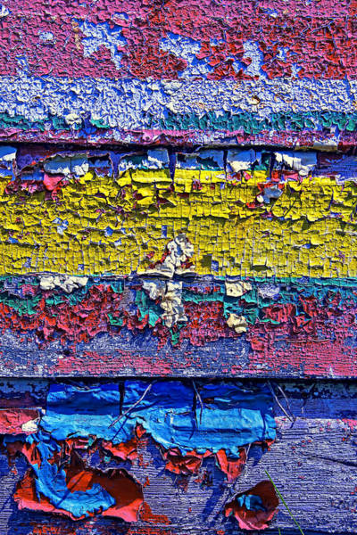 Flake Photograph - Many Colors Paint Peeling by Garry Gay