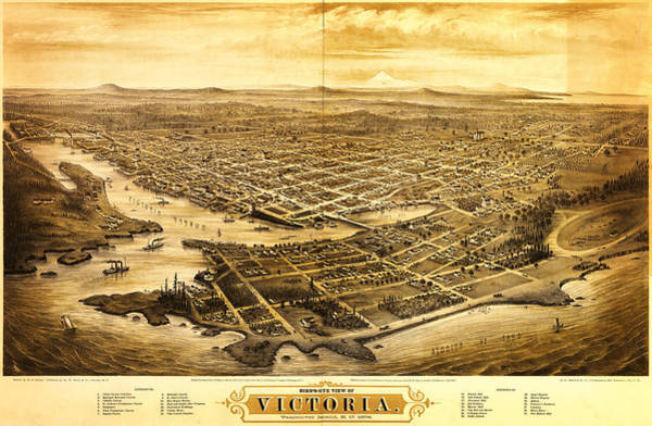Victoria Bc Wall Art - Painting - Map Of Victoria Bc Canada 1878 by MotionAge Designs