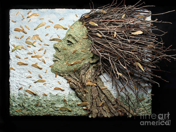 Wall Art - Mixed Media - Maple Showers by Adam Long