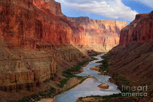 Photograph - Marble Canyon - April by Inge Johnsson