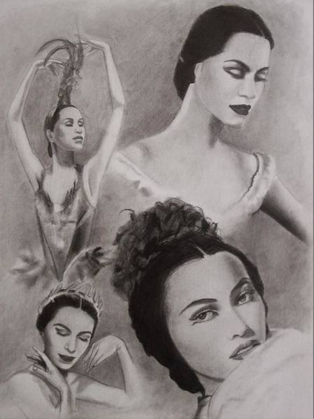 Amber Drawing - Maria Tallchief by Amber Stanford