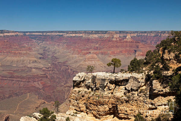 Photograph - Maricopa Point Grand Canyon National Park by Fred Stearns