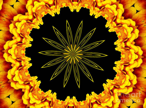 Photograph - Marigolds Kaleidoscope 1 by Rose Santuci-Sofranko