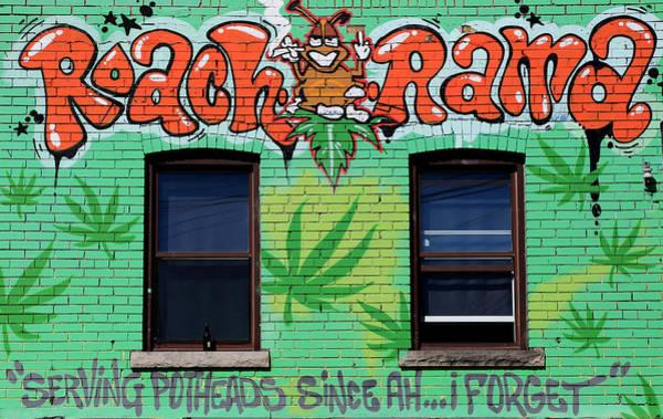 Photograph - Marijuana 3 by Andrew Fare