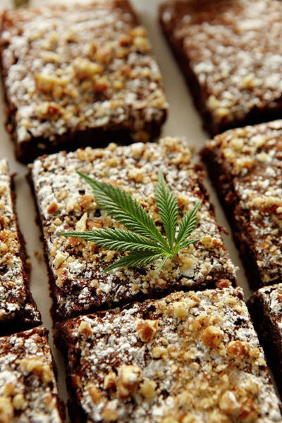 Therapy Photograph - Marijuana Brownies by Lew Robertson