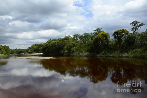 Chapa Photograph - Marimbus River Brazil Reflections 4 by Bob Christopher