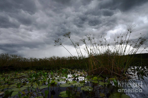 Chapa Photograph - Marimbus River Brazil Stormy Weather 1 by Bob Christopher