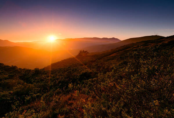 Photograph - Marin County Sunset by Alexis Birkill
