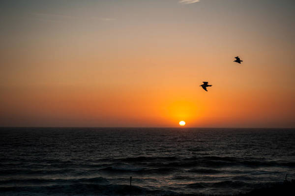 Photograph - Marina Beach Park Sunset by Dan McManus