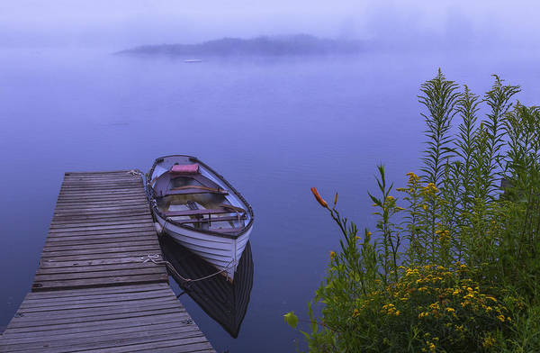 Photograph - Marina Rowboat by Tom Singleton