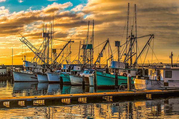Photograph - Marina Sunrise by Thomas Hall