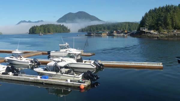 Vancouver Island Photograph - Marina, Tofino, Vancouver Island by Altrendo Travel