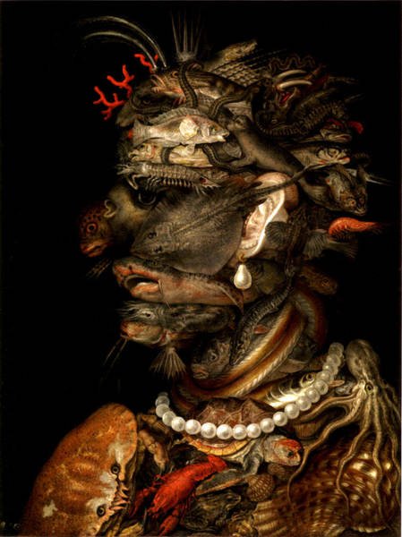 Digital Art - Marine Life by Giuseppe Arcimboldo