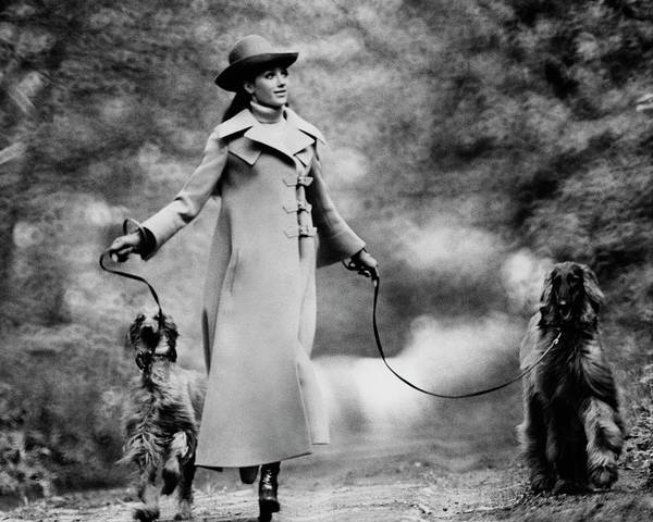 Wall Art - Photograph - Marisa Berenson Walking Two Dogs by Arnaud de Rosnay