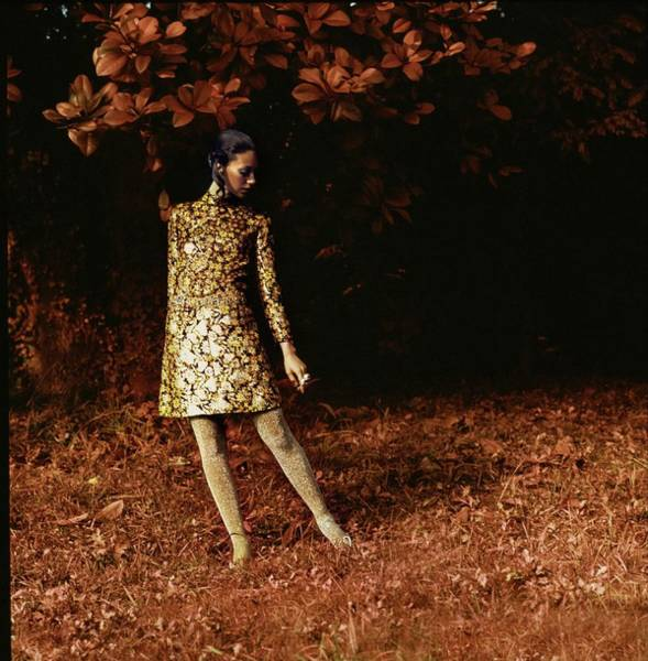 Autumn Photograph - Marisa Berenson Wearing A Dior Dress by Arnaud de Rosnay