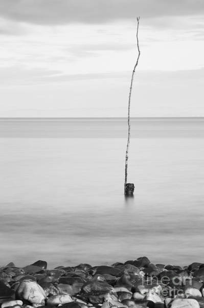 Bristol Channel Photograph - Marker by Anne Gilbert