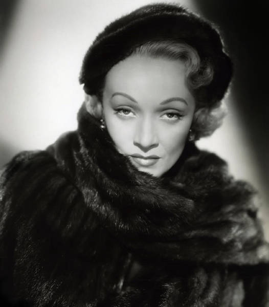 Leading Actress Wall Art - Photograph - Marlene Dietrich by Daniel Hagerman