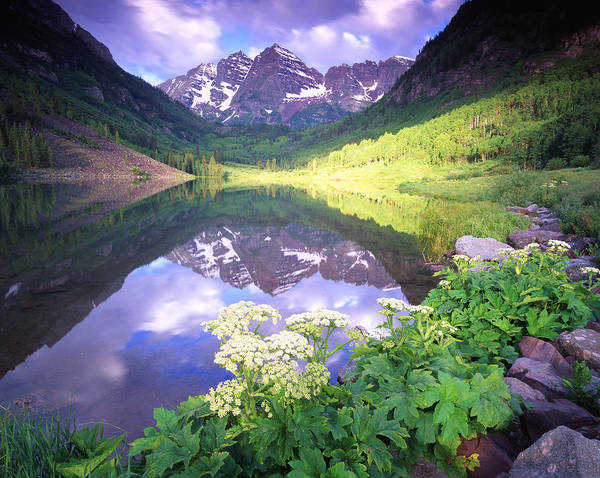 Photograph - Maroon Bells Reflection by Ray Mathis