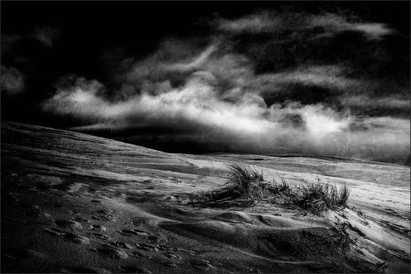 Dark Clouds Photograph - Marram Grass by Gilbert Claes