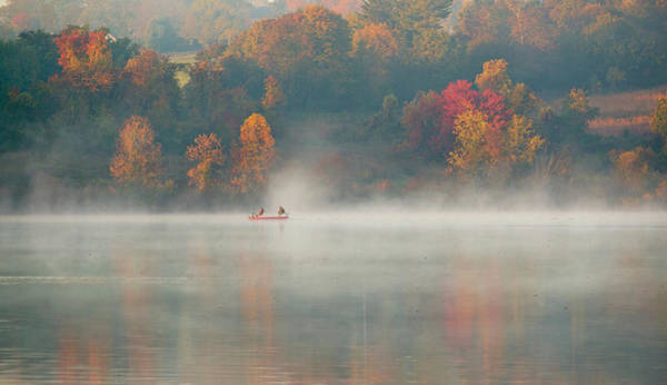 Foliage Photograph - Marsh Creek Pa by David Zhu