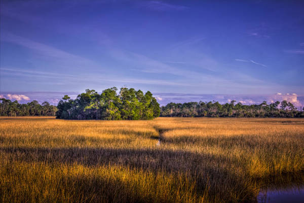 Wall Art - Photograph - Marsh Hammock by Marvin Spates