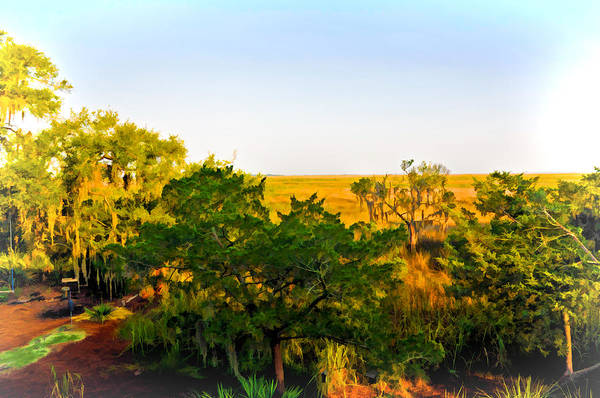 Photograph - Marsh Landscape by Ginger Wakem