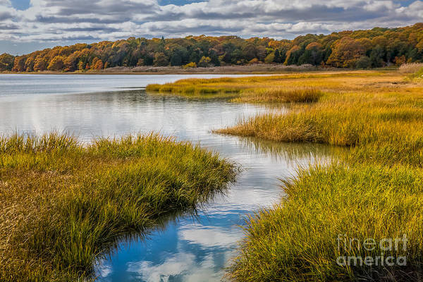 Photograph - Marsh Reflections 2 by Susan Cole Kelly