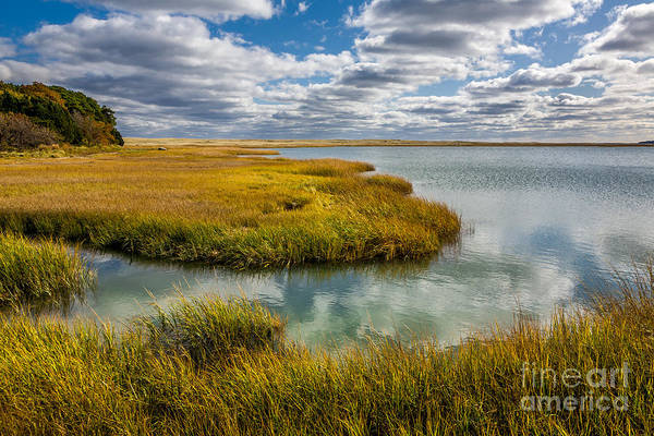 Photograph - Marsh Reflections by Susan Cole Kelly