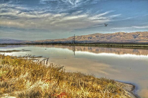 Alviso Photograph - Marshlands 2 by SC Heffner