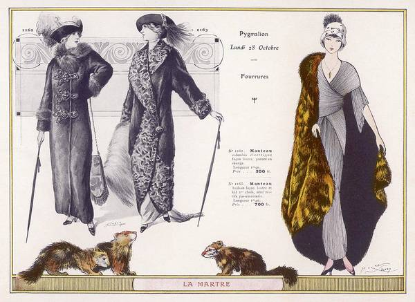 Fur Coat Drawing - Marten Fur Cloak & Ermine Hat by Mary Evans Picture Library