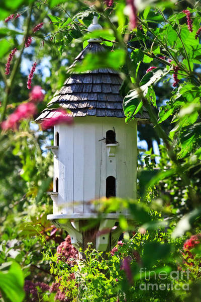 Photograph - Martin Birdhouse by Ms Judi