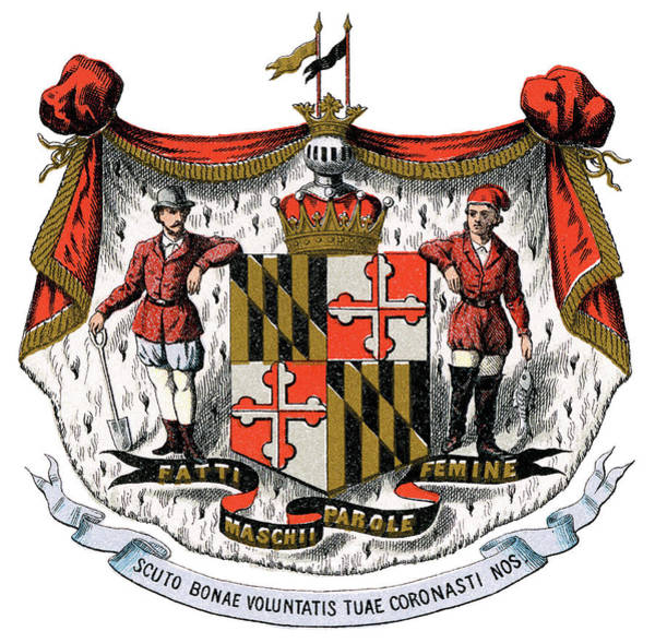 Wall Art - Painting - Maryland Coat Of Arms by Granger