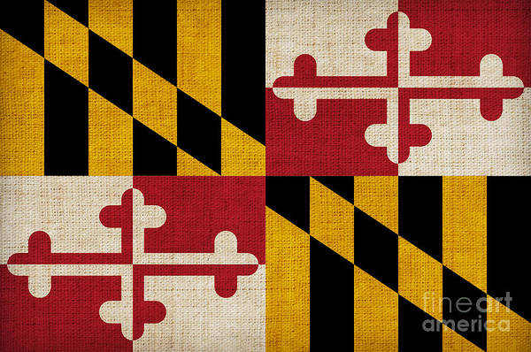 Declaration Of Independence Wall Art - Painting - Maryland State Flag by Pixel Chimp