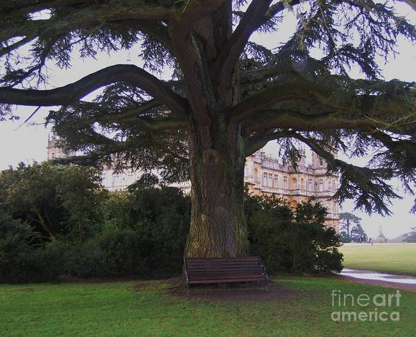 Wall Art - Photograph - Mary's Bench At Downton Abbey  by Marcus Dagan