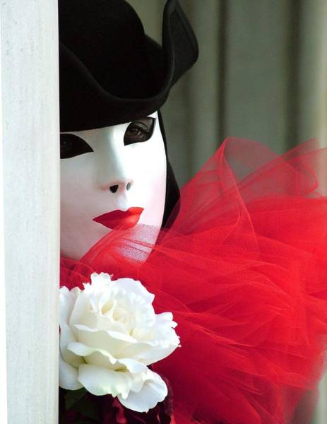 Photograph - Marzia's Red Ruffle by Donna Corless