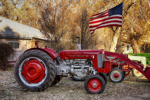 Photograph - Massey -  Feaguson 65 Tractor With Usa Flag by James BO Insogna