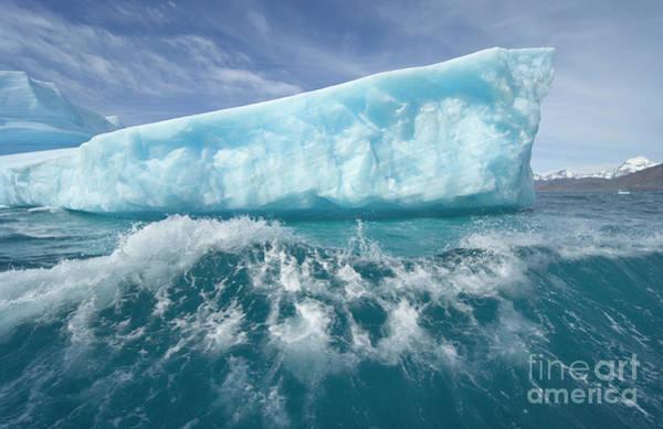 Photograph - Massive Iceberg Near Cumberland Bay by Yva Momatiuk John Eastcott