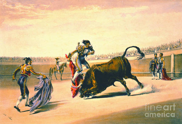 Matador Photograph - Matador 1860 by Padre Art