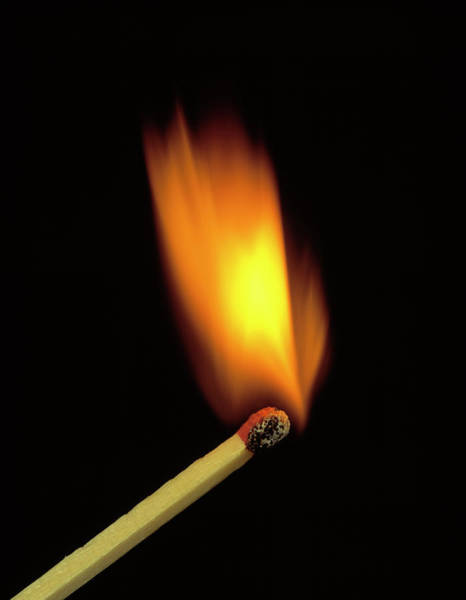 Striking Photograph - Match Bursting Into Flame by Adam Hart-davis/science Photo Library