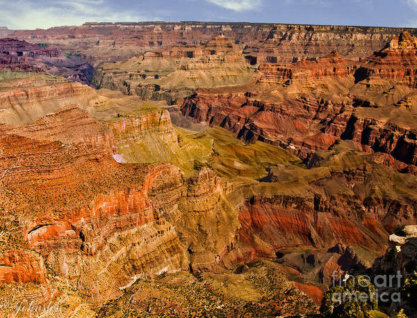 Photograph - Mather Point Formations. by Bob and Nadine Johnston